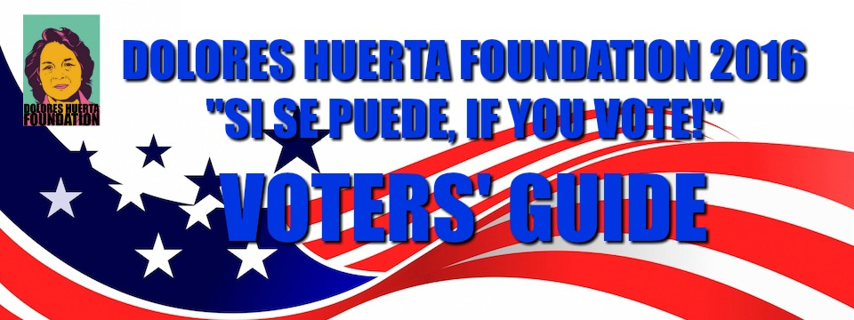 voter-guide-banner