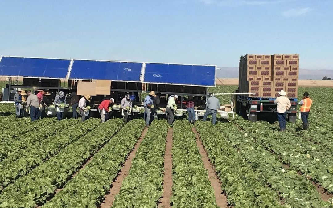 """DHF featured in, """"California poised to create Annual Farmworker Day"""" by The Desert Review"""